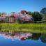 Japanese garden uniting families